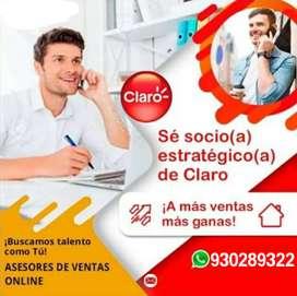 Asesores de venta online