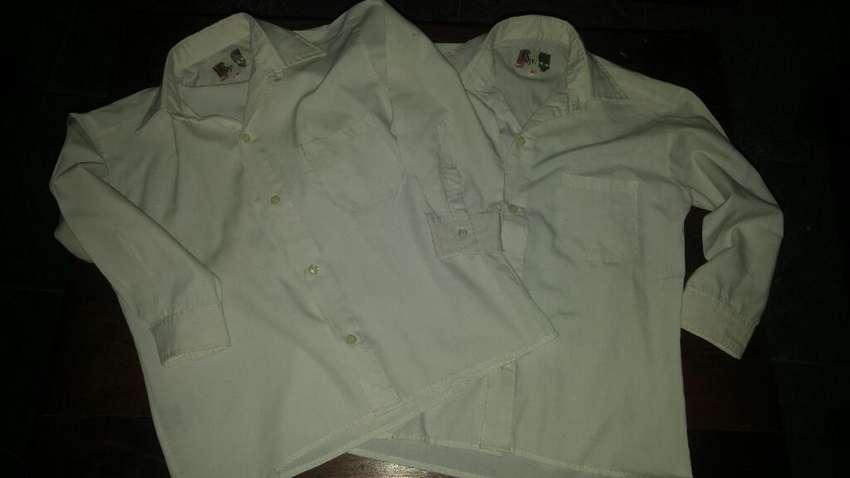 2 Camisas  Blancas Lisas T8 0