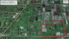 Se venden excelente hectareas y 1/2 hectareas. Oportunidad inversores y productores