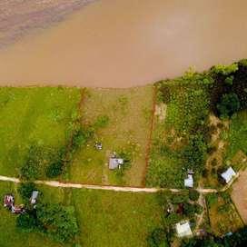 Parcela con vivienda en Puerto Arango (Hectárea)