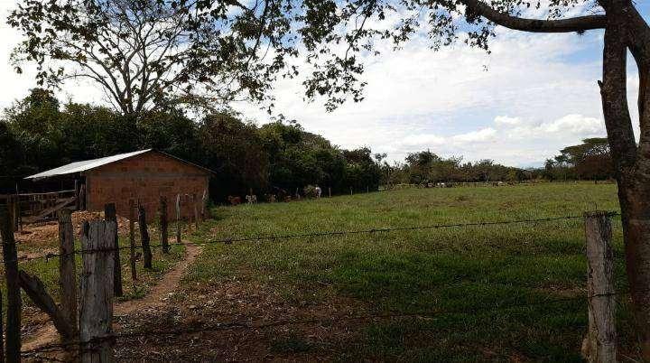 Venta finca 23 hectáreas en Pore - Casanare, vereda bocas de Pore 0
