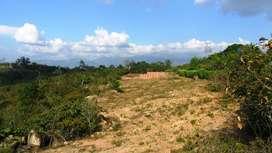 Lote de 1656 Mt2 en Acapulco, Girón