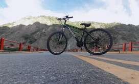 Bicicleta marca FENGOX