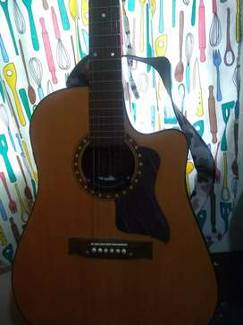 Liquido guitarra electroacústica
