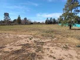 Terreno de 1 Hectarea en Parque Industrial Toledo.