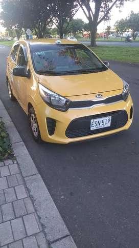 Taxi Kia picanto 2019