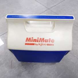 Mini Cooler By Igloo