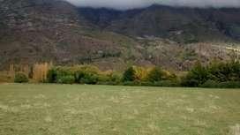 Chacra en Venta, El Hoyo , Provincia de Chubut