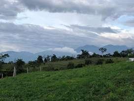 Parcela en  Ruitoque Bucaramanga   de 1250 m2 a solo 280.000 m2
