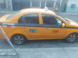 busco chofer profesional taxi