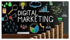 Docente de Marketing Digital
