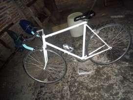 Bicicleta Ruta Ultraliviana