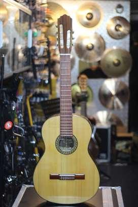 guitarra acustica de 7 cuerdas giannini