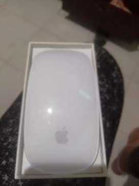 Magic mouse nuevo..