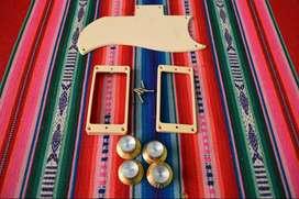 Perillas,golpeador,marcos Gibson Sg originales