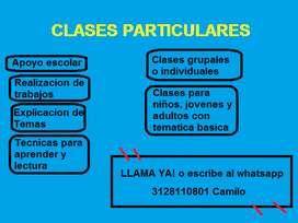 CLASES PARTICULARES Y/O APOYO ESCOLAR