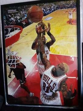 Cuadro NBA dennis rodman