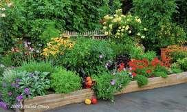 Jardines y huertos organicos