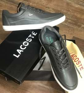 Zapatos Lacoste In world