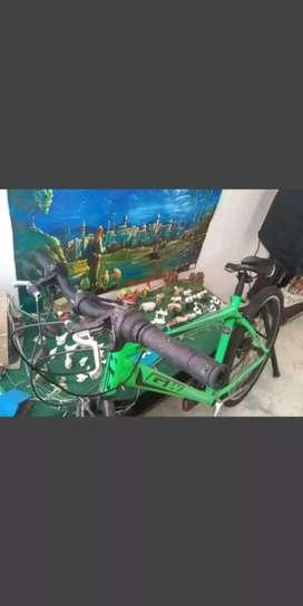Cicla color verde