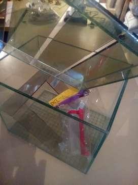 Hamstera vidrio grueso de lujo más bebedero