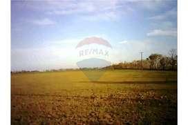 Campo para Agricultura - Santa Clara