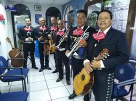 Mariachi disponible 24/7