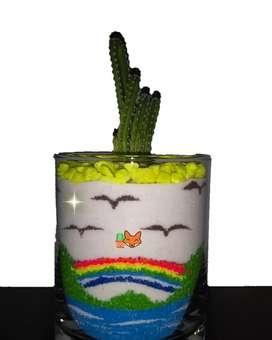 Cactus Decorados