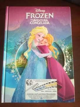 Vendo hermoso libro de princesa Frozen de Disney
