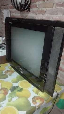 Televisor 29 pulgd