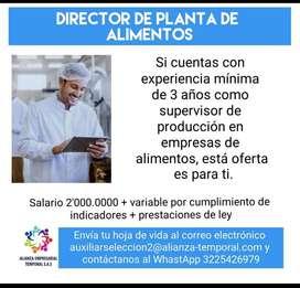 Director planta producción