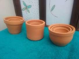 Venta de materas para suculentas, cactus, en cerámica.