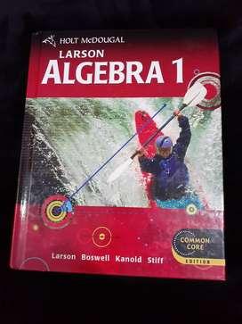 LARSON ALGEBREA 1