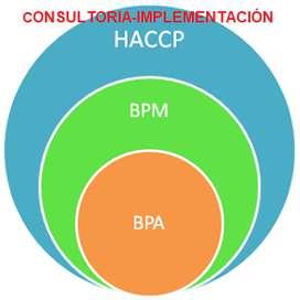 IMPLEMENTADOR  HACCP