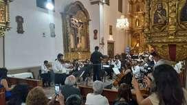 Clases de violín, piano y canto