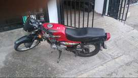 Vendo boxer ct