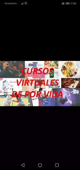 Cursos virtuales y vitalicios