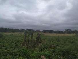 Venta de Terreno para Proyecto Inmoviliario,  Zona UEES