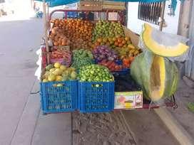 Venta de frutas y verduras a domicilio