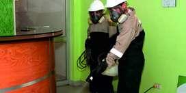 Ayudante de fumigación