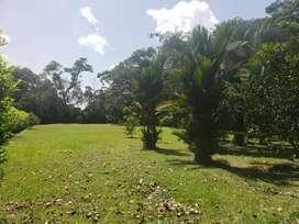 Lotes 2500 y 2150 mts2 Sector turístico el Humadal, Guamal-Meta