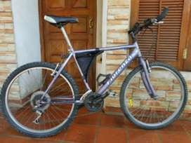 Bicicleta Fiorenza Plata rodado 26