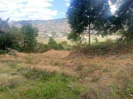 Venta de hectárea y media de terreno con excelente ubicaciòn en Gonzanamá,Loja