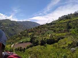 Vendó finca en Ubaque Cundinamarca
