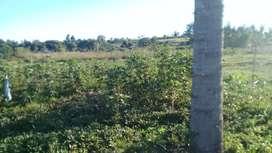 Vendo Terreno en Santa Ines