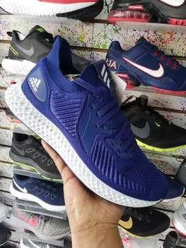 Zapatillas : ADIDAS, NIKE, LECOQ SPORTIF, Reebok, lacoste, under,