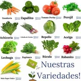 Semillas para Huerta