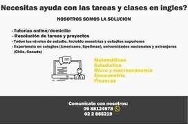 Tutorías personalizadas en Inglés o español de Matemática, Estadística, Economía, Econometría, Microeconomía, Finanzas