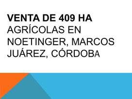 Venta de 409 ha agricolas en Noetinger, Marcos Juárez, Córdoba