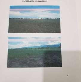 Terreno Para Loteo O Siembra 9717,4 m2
